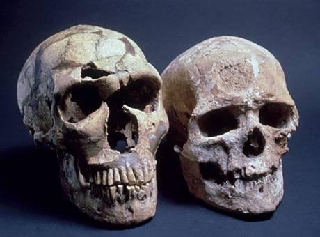 Sapiens s'est bien métissé avec Néandertal