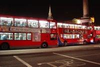 autobusy nocą