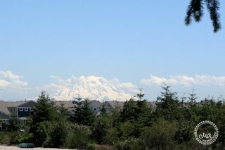 The majestic Mt. Rainier from a construction site, lol!