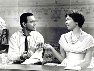 the apartment 1960 essays Free essay on critical analysis of a raisin in the sun feminism in the 1960 mama hadn't told travis to stay in the apartment when walter was.