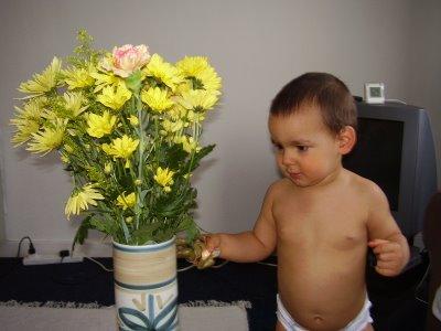 Daniel with flowers