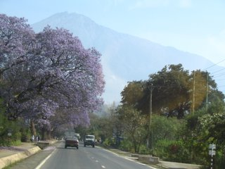 Outskirts of Arusha