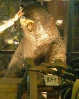 人形町店の入口にはクマ