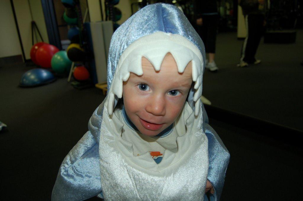 Land Shark Snl Chase Snl Land Shark