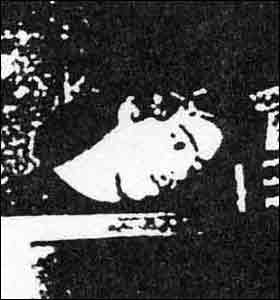 Walter Gibbons
