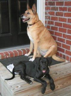 Cleo and Heidi