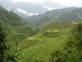 Longji Terraces in China