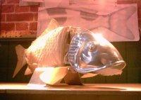 A robotic fish