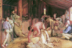 'Shearing the Rams' by Tom Roberts