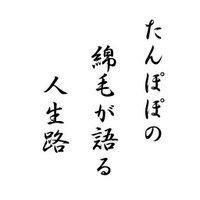 haiku_poetry_2