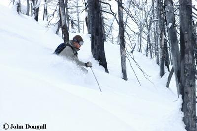 Cat Skiing in the Enchanted forest on East Ridge at Chatter Creek - a John Dougall photo