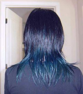 blue hair dye pictures of my hair dyed blue