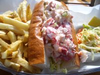 lobster roll from yankee pier