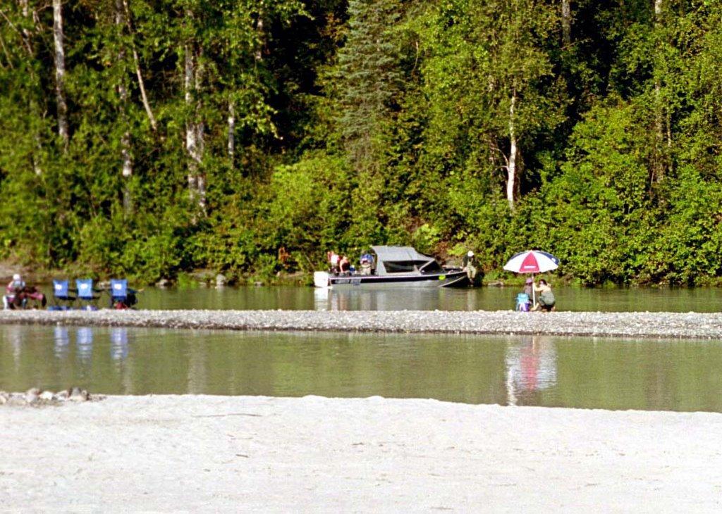 The tavernier 39 s alaskan adventures talkeetna silver fishing for Clear creek fishing