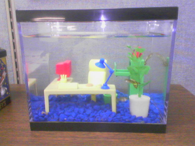 Accepting the echo office fish tank for Office fish tank