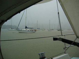 View in the rain
