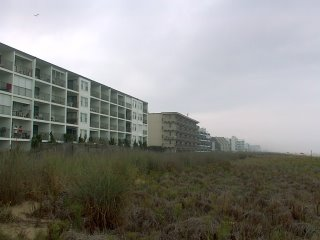 Ocean City Md.