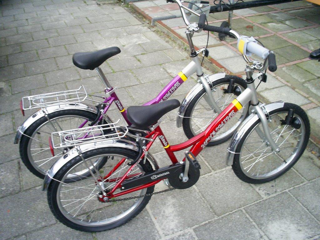 meisjes mountainbike 20 inch