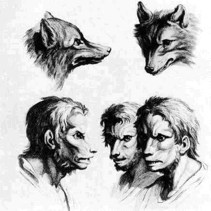 comment avoir la lycanthropie