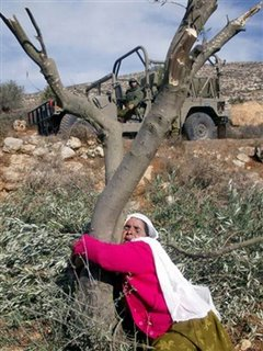 A Palestinian woman embraces the trunk of an olive tree after it was destroyed as an Israeli troop looks on in the West Bank village of Salem, near Nablus November 27, 2005. Jewish settlers cut down and uprooted hundreds of olive trees on Palestinian farms near the West Bank city of Nablus on Sunday, residents and Israeli police said. Settlers from the most radical enclaves in the occupied West Bank have often attacked farms since the start of the Palestinian uprising in 2000. Settlers say that the land, which Palestinians want for a state, is theirs by biblical birthright.