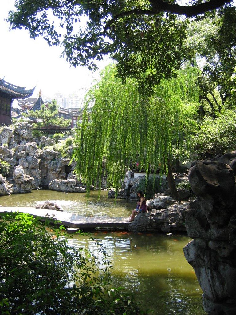Voyage en chine 2006 29 juillet jour 16 shanghai for Le jardin yuyuan