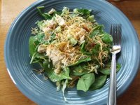 mixture of cubed rhubarb stalks, baby spinach, shredded cheddar cheese, cubed chicken breast about 1-1/2 matchbox size