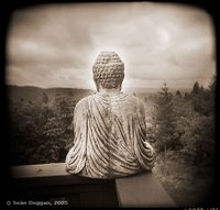 Buddha with a view