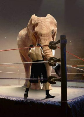 man vs elephant on wwf
