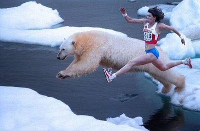 run against polar bear