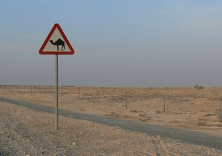 A sign warns motorists of wandering camels
