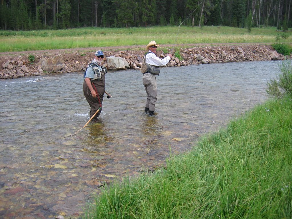 Northern illinois fly tyers fishing on the gray river for Trout fishing illinois