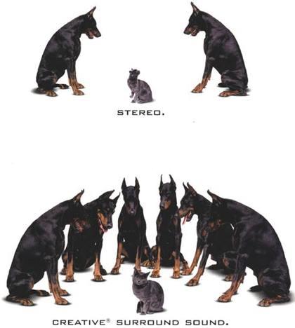 Dog Stereo
