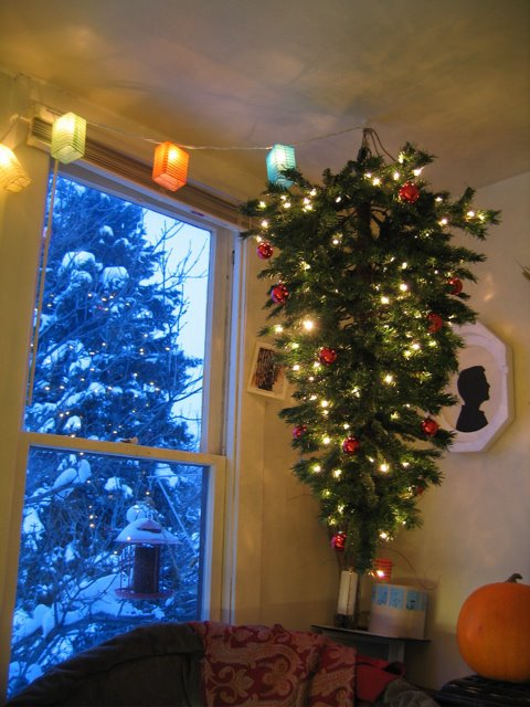 Nice Growdown: Upside Down Hanging Christmas Tree