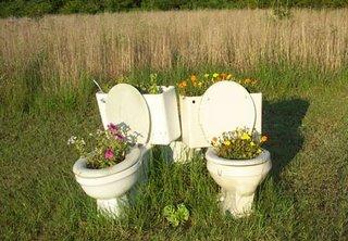 Redneck Garden