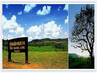 Thung Salaeng Luang