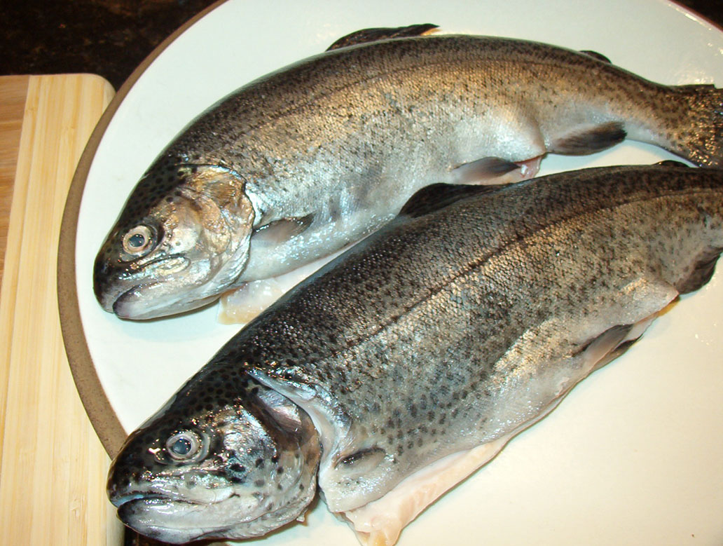 Boston Chef: Grilled Whole Trout