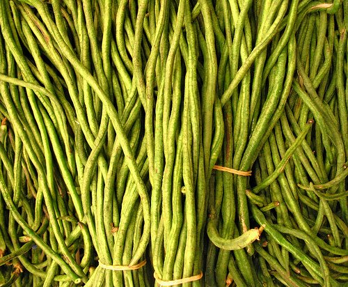 native american recipes: green beans with leeks and toasted pinenuts