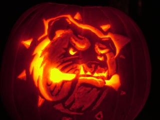 Hamilton Bulldogs team logo