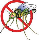 Nanny Bans Mosquito