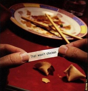 The Wisdom of Fortune Cookies
