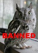 Nanny Bans Owls