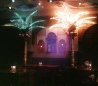 Harem's deranged decor