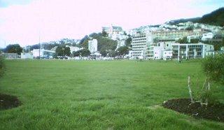 Waitangi Park field