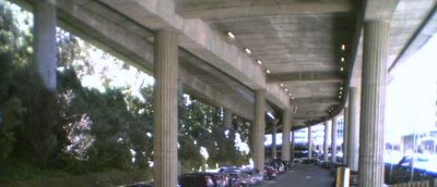 Under the motorway, between Kelburn and the Terrace