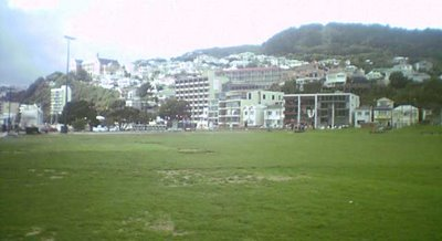 Waitangi Park - after the Festival