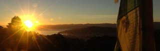 sunrise over wellington, new zealand