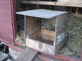 Keeping chickens at home in the garden. Building a nest box.