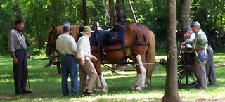 Oakville Indian Festival Civil War