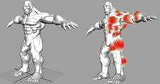 Un meilleure rendu des muscles dans l'animation 3D