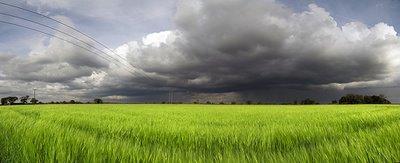 Grid computing pour prévenir les tempêtes